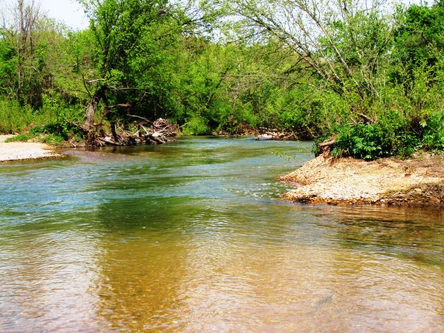 Niangua River Ozark Sweetwater Fly Fishing